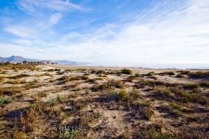 Playa del serradal apartamentos castellon golf place